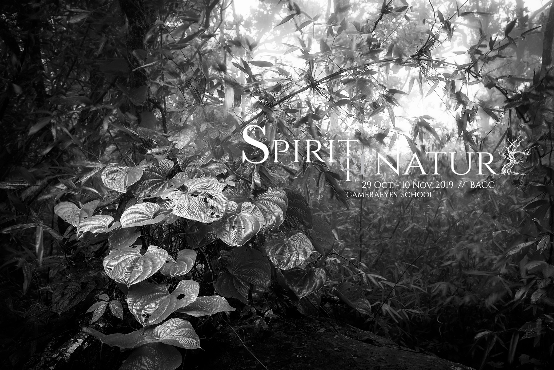 Spirit of Nature 2019 Exhibition