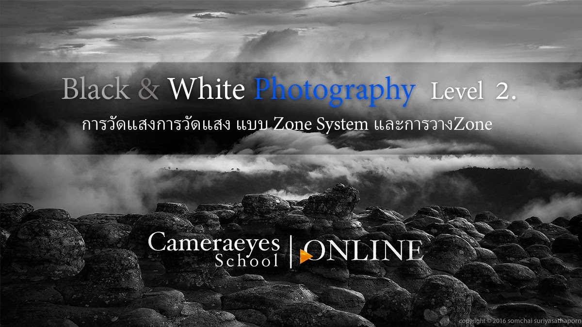 Black & White Photography Level 2