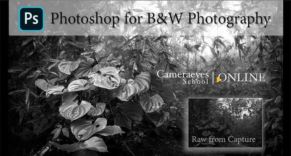 Photoshop for B&W Photography